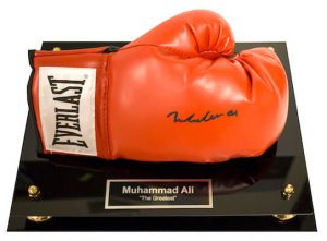Charity Auction Items - Autographed Championship Boxing Gloves
