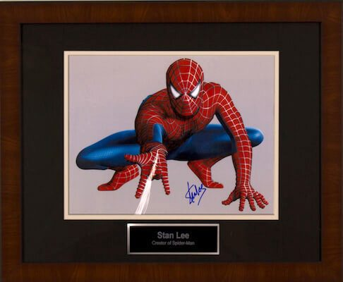 Charity Auction Items - Autographed Animation Art - Spiderman